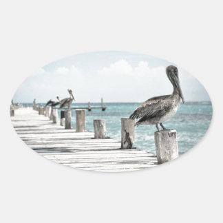 Pelícanos hermosos de Brown y agua azul Pegatina Ovalada