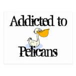 Pelícanos Postal