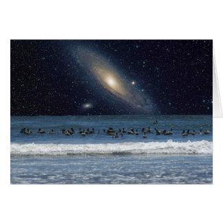Pelícanos y galaxia del Andromeda Tarjetón