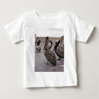 Pelicans 1 infant t-shirt