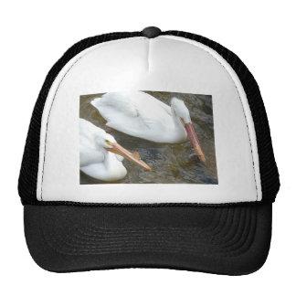 pelicans, 2 trucker hat