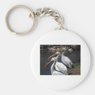 pelicans,3 basic round button keychain