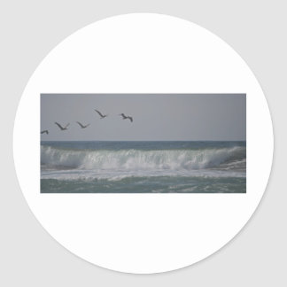 Pelicans at Horsfall Beach, Oregon Classic Round Sticker
