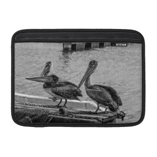 Pelicans at the harbor sleeve for MacBook air