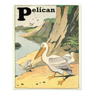 Pelicans at the Sea Shore Photo Print