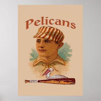 Pelicans Baseball Poster print