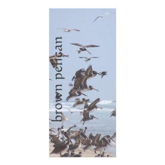 Pelicans Book Mark Rack Card
