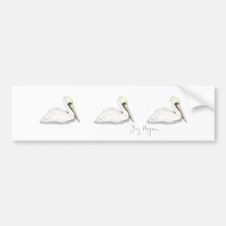 Pelicans Bumper Sticker