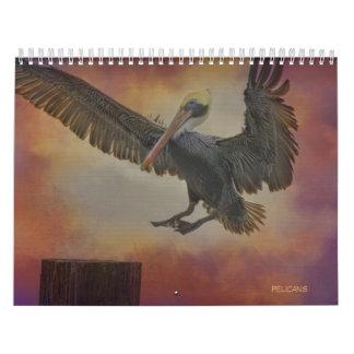 Pelicans Calendar