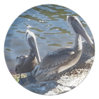 Pelicans Dinner Plates
