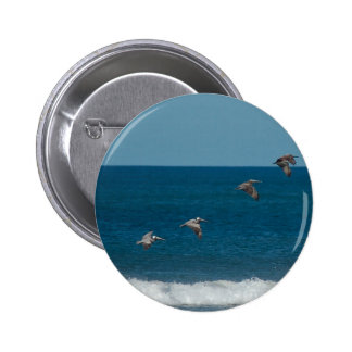 Pelicans flying in formation, Costa Rica Pinback Button