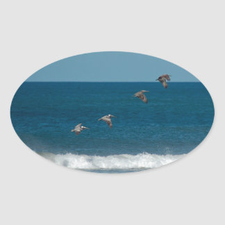 Pelicans flying in formation, Costa Rica Oval Sticker