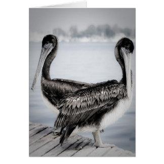 Pelicans Greeting Card