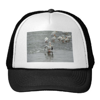 Pelicans Mesh Hats