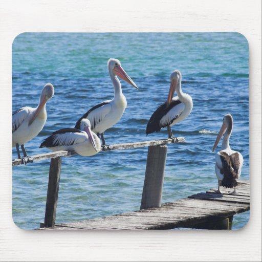 Pelicans Mouse Pad