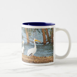 pelicans observing the flood Two-Tone coffee mug
