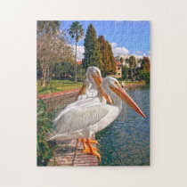 Pelicans of  Florida. Jigsaw Puzzle