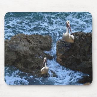 Pelicans_On_Big_Sea_Rocks,_ Mouse Pad