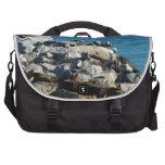 Pelicans on the Rocks Laptop Commuter Bag