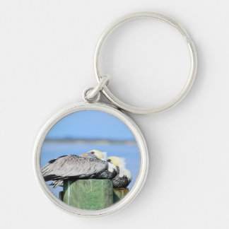 Pelicans Resting Silver-Colored Round Keychain
