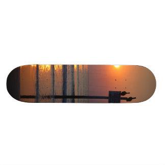 Pelicans Sunrise Ocean Daytona Beach FL Skateboard