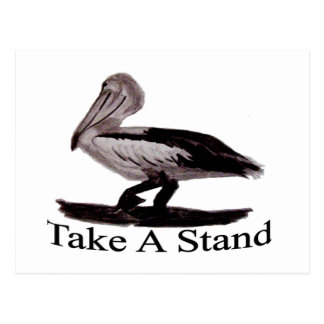 Pelicans Take A Stand Postcard