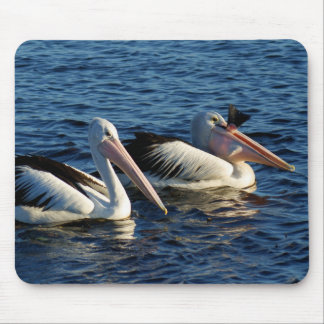 Pelicans with Fish Mouse Pad