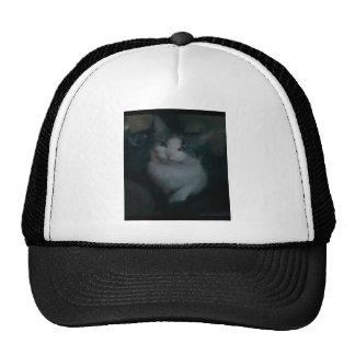 Película # 4 gorras