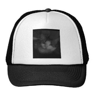 Película # 5 gorras de camionero