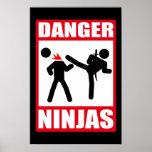 Peligro Ninjas Impresiones