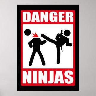 Peligro Ninjas Póster