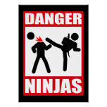 Peligro Ninjas Posters