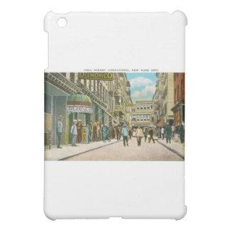 Pell Street (CHINATOWN), New York City (Vintage) iPad Mini Cover