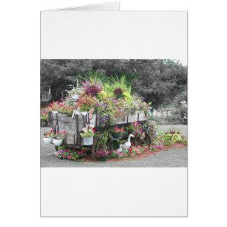 Pella-flor Tarjeta De Felicitación