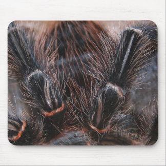 pelo de la araña tapete de ratón