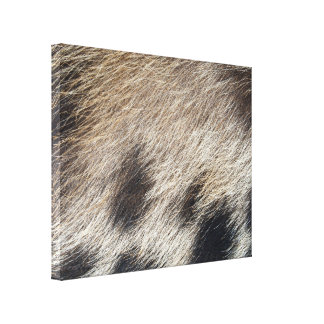 Pelo de la piel de cerdo impresiones en lona estiradas