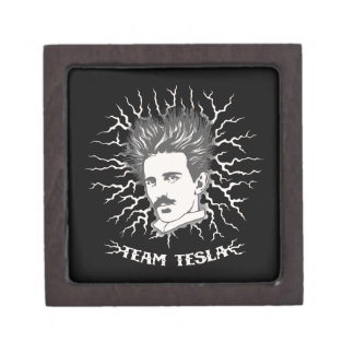 Pelo de los parásitos atmosféricos de Tesla del eq Cajas De Joyas De Calidad