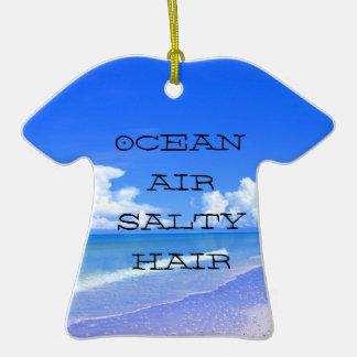 Pelo salado del aire del océano