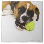 Pelota de tenis penetrante del perro azulejo cuadrado grande