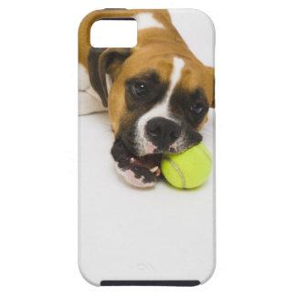 Pelota de tenis penetrante del perro iPhone 5 Case-Mate coberturas