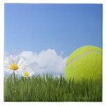 Pelotas de tenis azulejos
