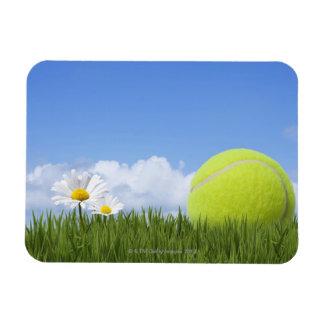 Pelotas de tenis iman de vinilo