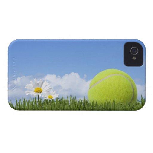 Pelotas de tenis iPhone 4 carcasas