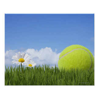 Pelotas de tenis impresiones