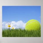 Pelotas de tenis póster