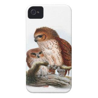 Pel's Fishing Owl iPhone 4 Covers