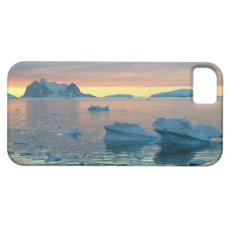 Peltier Channel in the last light of the day iPhone 5 Covers