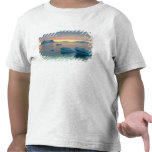 Peltier Channel in the last light of the day Tee Shirt