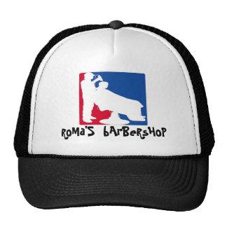 pelu del logotipo de la impresión del vizta, la ba gorras de camionero