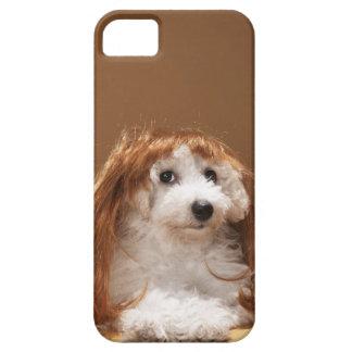 Peluca del jengibre del perrito que lleva iPhone 5 fundas